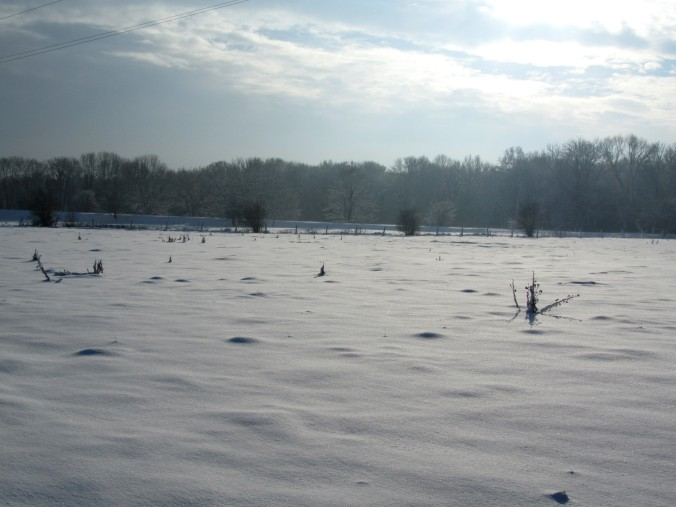 neige-20-12-10-057