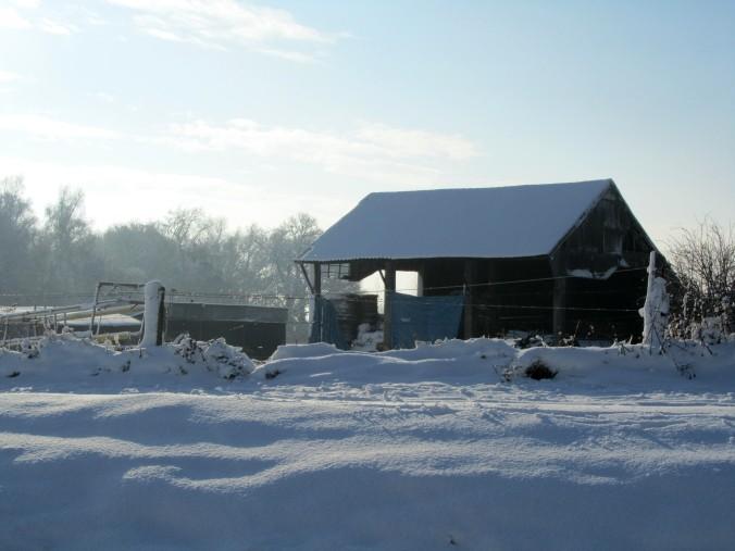 neige-20-12-10-066