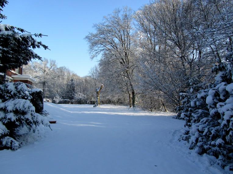 neige-20-12-10-086